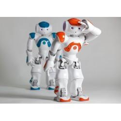 NAO Next Gen Humanoidas robotas (oranžinis)