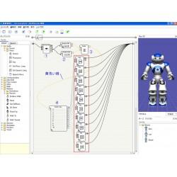 NAO Choregraphe programinės įrangos mobili licenzija