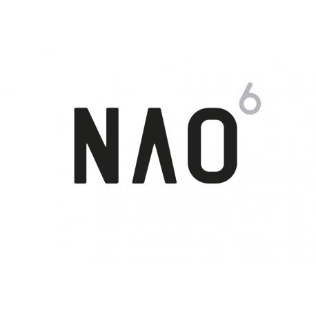 NAO 6 Humanoidas robotas